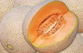 image of ripe melon