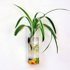 Wall Mounted Glass Flower Vases Unbranded Vases Ebay