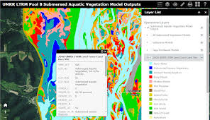 Mississippi vegetaion images Submersed aquatic vegetation model jpg