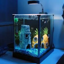 82 best fish images on fish aquariums cool fish tanks
