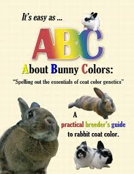 rabbit books rabbit books sale