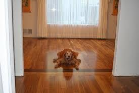 golden teak flooring flooring designs