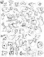 rat sketch practice by never mor on deviantart