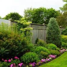 Inexpensive Backyard Landscaping Ideas Best 25 Cheap Backyard Ideas Ideas On Pinterest Diy Landscaping