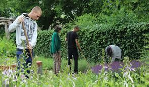 g rtner garten und landschaftsbau gärtner in garten und landschaftsbau