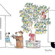 margarita cartoon sandra boynton home facebook