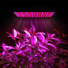 philips led grow light non philips jpg immagine jpeg 1000 1000 pixel led ovunque