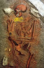 colored bones varied meanings bones don u0027t lie