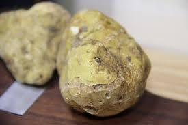 italian white truffle fresh italian white truffle tuber magnatum pico 4 oz buy fresh