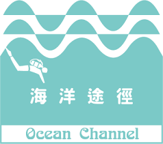 bureaux partag駸 海洋途徑潛水 channel diving 9 622 photos 89 avis centre
