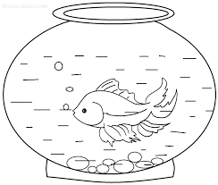 innovative rainbow fish coloring minimalist article