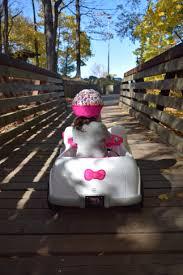 ride kitty car savvy sassy moms