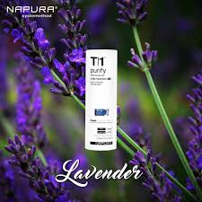 lavender is used by many as an essential oil to eliminate stress
