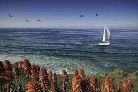 ocean beach homes for sale ocean beach real estate
