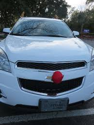 reindeer ears for car cars that me up thoughts tips and talesthoughts tips and