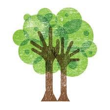 41 best tree logo images on tree logos logo designing