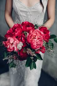 Peony Flowers by Best 25 Peony Colors Ideas Only On Pinterest Peonies Red