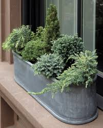 Small Window Box Flowers Window Box Ideas On Pinterest Home Intuitive