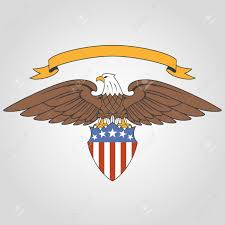 american eagle stock photos royalty free american eagle images