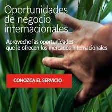 directorio comercial de empresas y negocios en mxico directorio de empresas españolas establecidas en angola