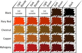 different shades of red posts related different shades red hair color chart medium hair