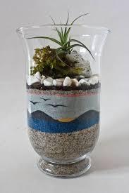 how to make sand art terrariums google search diy pinterest