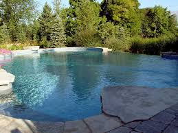 vanishing edge pool backyard infinity pool photo shared by