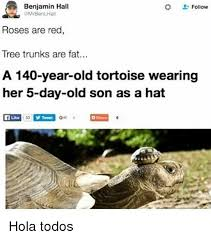 Tree Trunks Meme - benjamin hall follow roses are red tree trunks are fat a 140 year