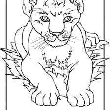 coloring lion cub kids drawing coloring pages marisa
