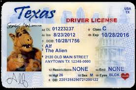 template tennessee drivers license editable photoshop file psd