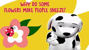 why do some flowers make sneeze interesting facts about