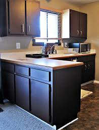 Painting Kitchen Cabinet by Dark Painted Kitchen Cabinets Everdayentropy Com
