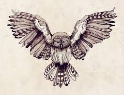 best 25 owl chest ideas on tattoos arm to