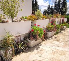 Heat Resistant Plants Multicoloredpieces Spring Garden 2014