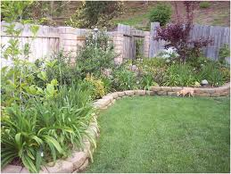 Backyard Landscaping Ideas For Privacy by Backyards Terrific Simple Backyard Landscape Design 25 Best