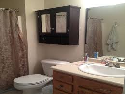 bathroom trendy very limited storage above the toilet this