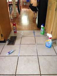 stylish cleaning floor grout i tried four methods to clean the