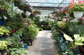 pennsylvania garden center pittsburgh pa best feeds garden