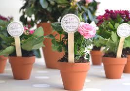 Flower Favors by Mini Flower Pot Diy Favors 10 X Terracotta Plant Pots With