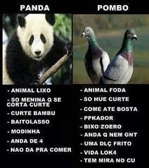 pombo panda meme by thesageofsixpaths memedroid