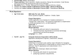 software developer resume tips resume senior automation engineer sample resume stunning