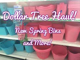 dollar tree haul new line of bins