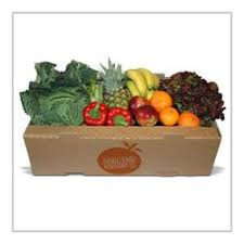 fruit delivery company organic delivery company london sw85ee organic delivery vegetable