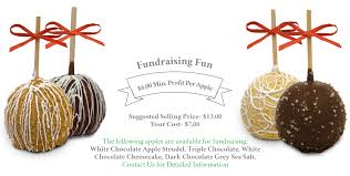 gourmet candy apples wholesale caramel apple fundraiser opportunity