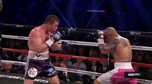 Uppercut Meme - beautiful tiger uppercut by saul canelo alvarez sports
