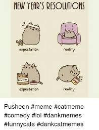 Pusheen Cat Meme - new year s resolutions reality expectation cat food low fat