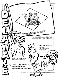 delaware state flower delaware coloring page crayola com