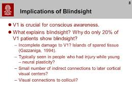 What Is Blind Sight Perception Chris Rorden Lecture 8 Vision And Perception Ppt