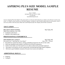 Promotional Model Resume Template Internet Newspaper Research Opportunities Cheap University