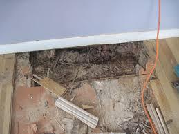 Repairing Laminate Flooring Water Damage Water Damage To Wood Floors Duffyfloors
